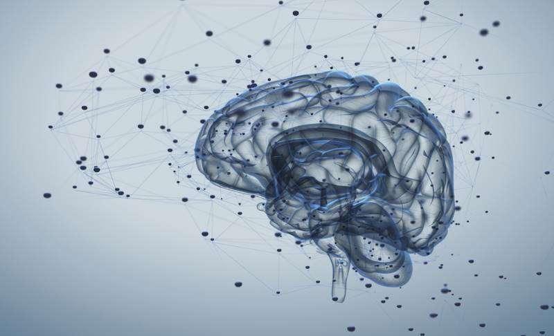 สมองเปลี่ยนแปลงได้ มนุษย์ที่แท้ก็พัฒนาตนได้